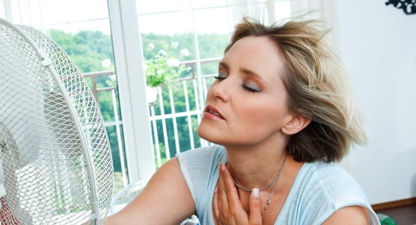 Cu l es la temperatura ideal dentro de casa en verano aire acondicionado mitshubishi - Temperatura ideal calefaccion casa ...